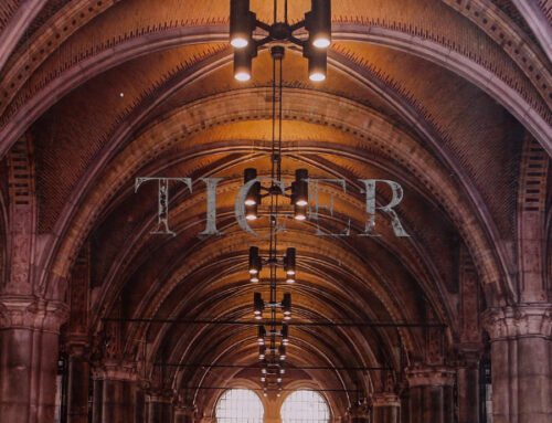 آلبوم کاغذ دیواری تایگر Wallpaper Album Tiger